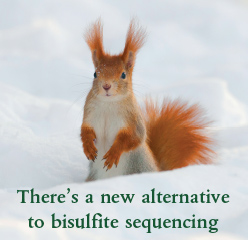 There's a new alternative to bisulfite sequencing