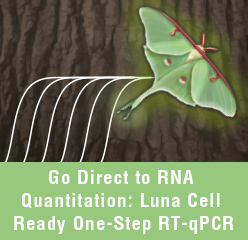 30 percent Off Luna qPCR Kits